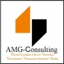 Africa Management Group-Consulting